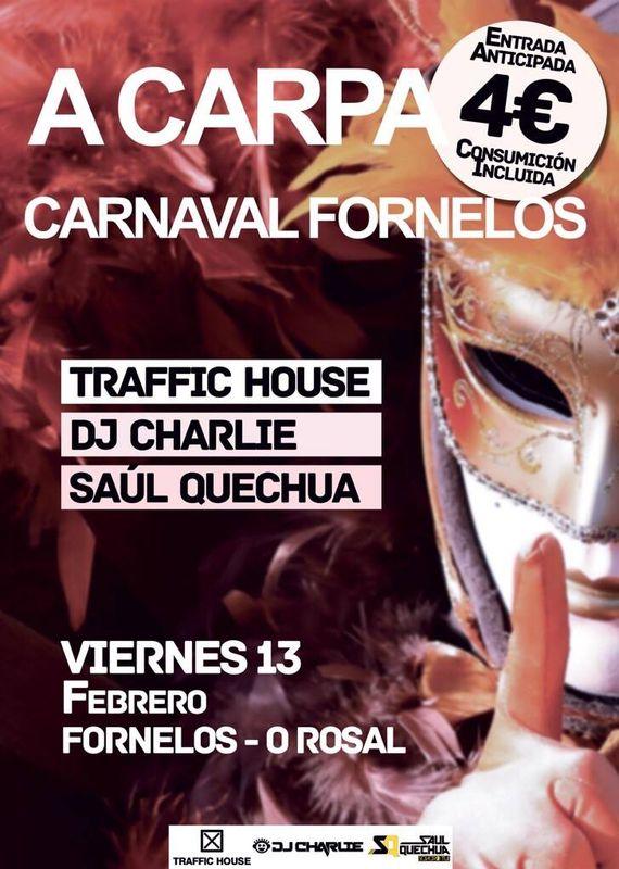 13-02-2015 Fornelos diario.jpg